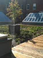 Visite de la terrasse sur le toit du Collège Durocher Saint-Lambert