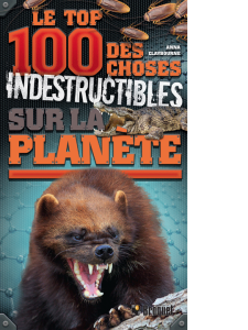 Top-100-indestructibles
